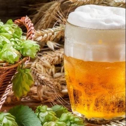 Degustazione birre artigianali