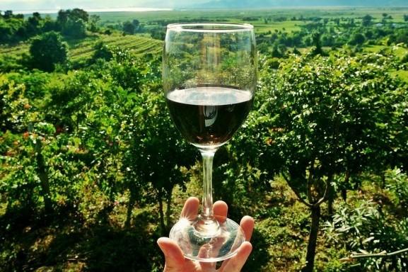 Degustazione Vini: Pinot Nero